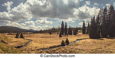 (sumava)., názor, breznik, bohémský, les, valley., lusen