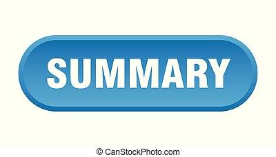 summary button. summary rounded blue sign. summary
