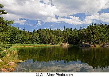 summer., אגם