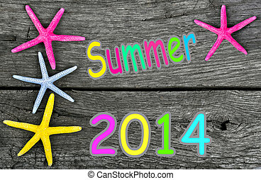 summer 2014 background with starfis