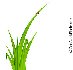 Summer Abstract Background with Grass. Vector Illustration.