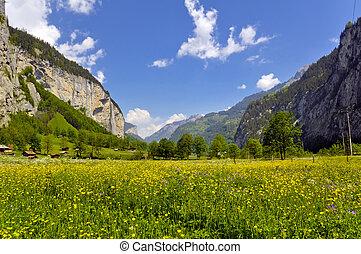 Summer Alpine rural landscape