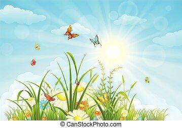 Summer and spring landscape