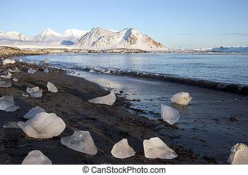 Summer Arctic landscape