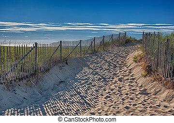 Summer at Cape Cod
