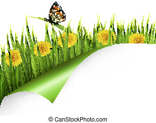 Summer background with dandelions and a butterfly. Vector.