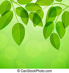 Summer Background with foliage. Vector illustration.