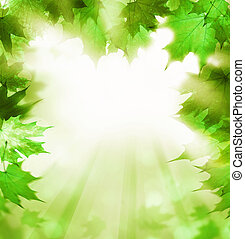Summer Background with Green Leaves Border. Abstract Greenery Foliage