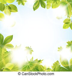 Summer background with leaves