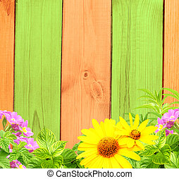 Summer background with old wooden fence, flower and green ...