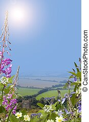 Summer background with wild flowers, Portrait - Wild flower...