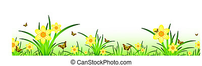 summer banner with narcissus meadow scenery and butterflies. Copyspace for your text