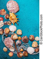 Summer beach background frame, seashells on cyan background.