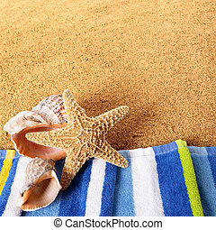 Summer beach border starfish seashore background square