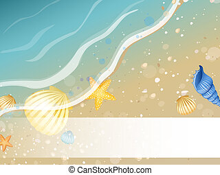vector illustration of seashells on a summer beach