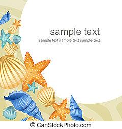Summer Beach Design - vector illustration of seashells on a ...