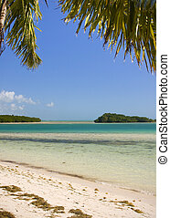 Summer beach scene with palm trees - Beautiful Summer...