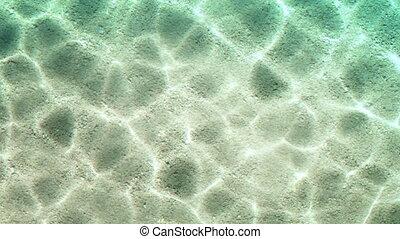 summer beach water render