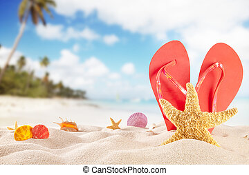 Summer beach with accessories