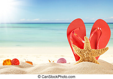 Summer concept with sandy beach, shells and red sandals