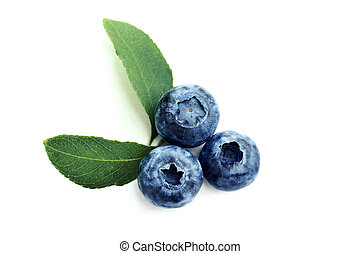 Summer blueberry isolated on white background. Berries for design. Close up top view or flat lay with place for your text