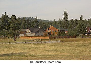Summer cabin in the meadow forest