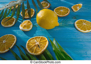 summer citrus fruits background