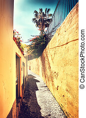 Summer cityscape with narrow street in Funchal, Madeira