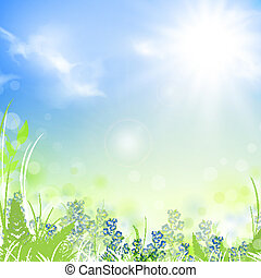 Summer - summer meadow with green grass over blue sky with...