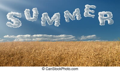 Summer - Cloud text in the blue sky over wheat field....