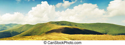 Summer clouds above Carpathian mountain meadows in hdr...