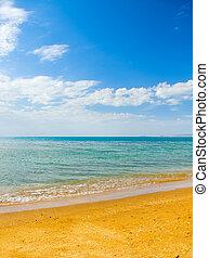 Summer coast of beach