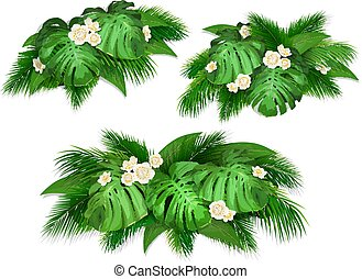 Summer composition with exotic leaves. Set of bush tropical ...