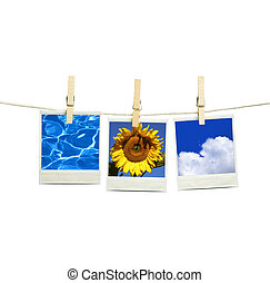 summer concept - isolated on white background