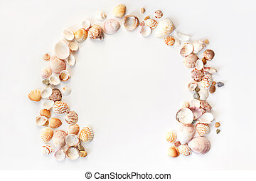 Summer concept with seashells and starfish on pastel blue background. Top view, flat lay.