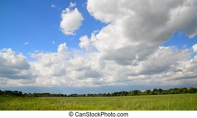 Summer countryside in Russia