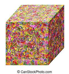 Summer cube concept