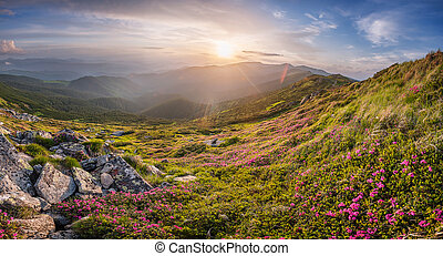 Summer evening in mountains