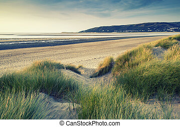 Summer evening landscape view over grassy sand dunes on beach wi