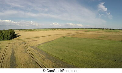 Summer farmland fields, aerial view - Summer farmland fields...