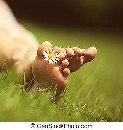 Summer feelings - Daisy and bare feet on green grass, copy...