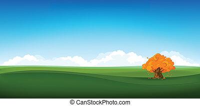 Field Landscape - Summer Field Landscape. Eniroment...
