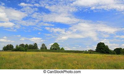 Summer field timelapse