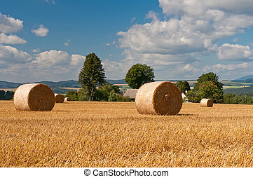 Summer Field - View of summer field with straw bales.