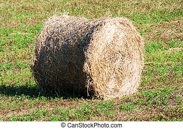 Summer Field with Hay Bale as background