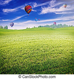 Summer field with lot of air balloons over horizon, abstract lan