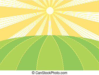 Summer field.Vector nature landscape with sun