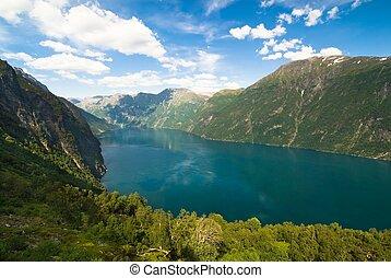 Summer fjord