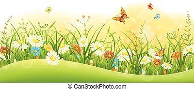 Summer floral banner