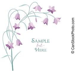 Summer flower campanula - Vector illustration purple...